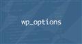 Производительность опций в WordPress