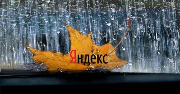 Яндекс не собирается выплачивать 50 тыс. рублей «Серебряному дождю»