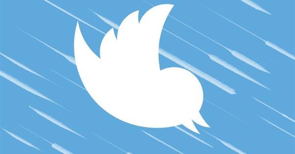 Стоимость акций Twitter упала с 11 до 13,5% за сутки