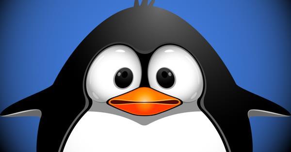 Google: Penguin не является алгоритмом машинного обучения