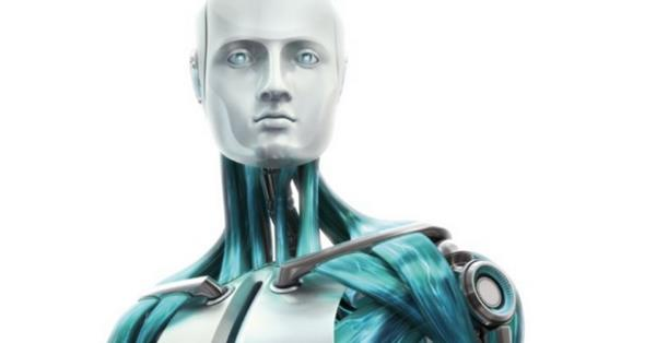Госдума займется регулированием взаимоотношений человека и роботов