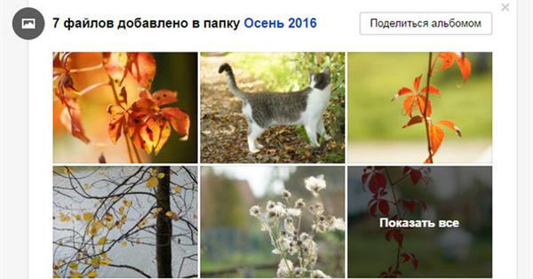 В веб-версии Яндекс.Диска появилась лента событий