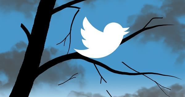 Акции Twitter упали на 18% после отчёта о сокращении месячной аудитории
