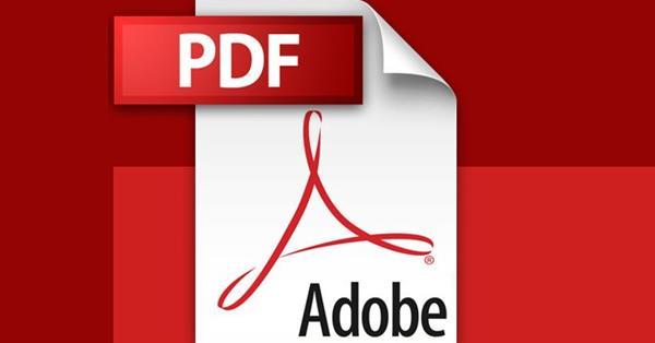 Google начал создавать блоки с ответами из PDF-файлов