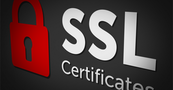 Россия входит в топ-10 стран по количеству валидных SSL