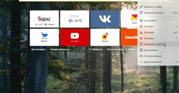 В Яндекс.Браузере для всех платформ появился менеджер паролей