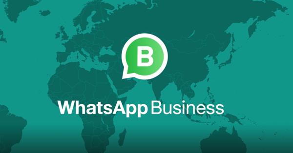 Приложение WhatsApp Business стало доступно на iOS