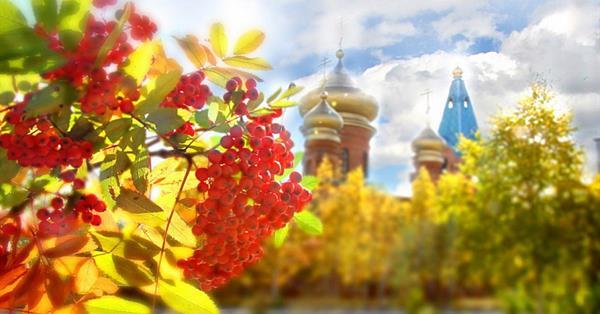 Яндекс: на что растет спрос накануне и во время ноябрьских праздников
