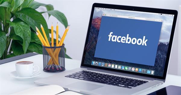 В результатах поиска Facebook появились панели с информацией из Wikipedia