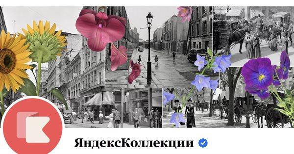 С 21 сентября Яндекс.Коллекции поменяют формат