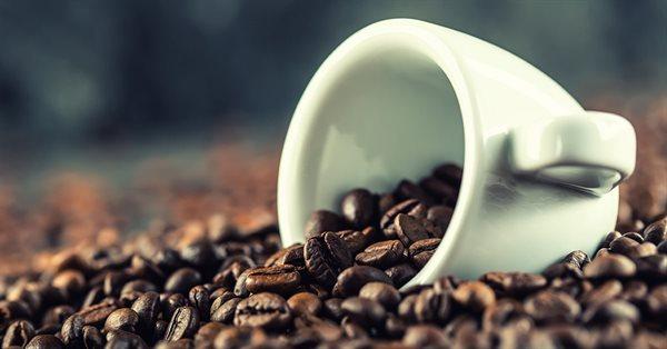 В Google рассказали, что делает система Caffeine