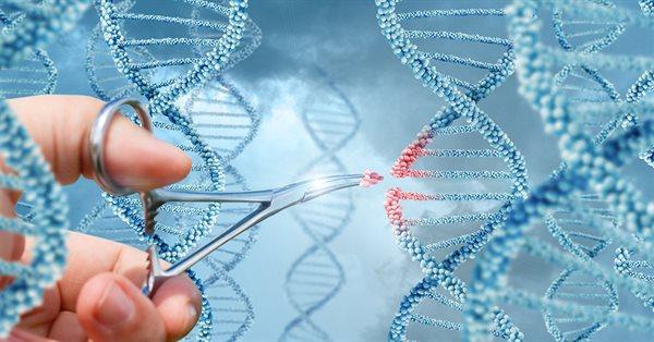 В Google Ads нельзя рекламировать генную и клеточную терапии