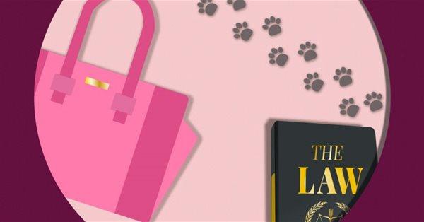 В Google появилась новая пасхалка в честь 20-летия «Блондинки в законе»