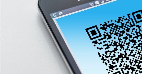 В рунете растет число сайтов-имитаций портала Госуслуг