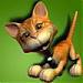 katnef