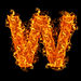 webuses