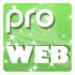 pro_web