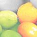 Art Citrus