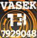 Vasek13